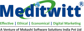 Meditwitt India Private Limited Logo